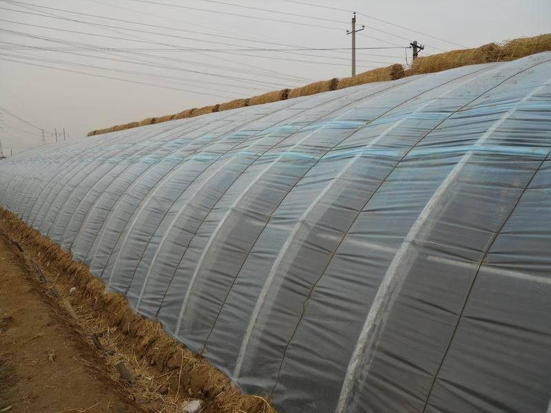湖北农业大棚的发展
